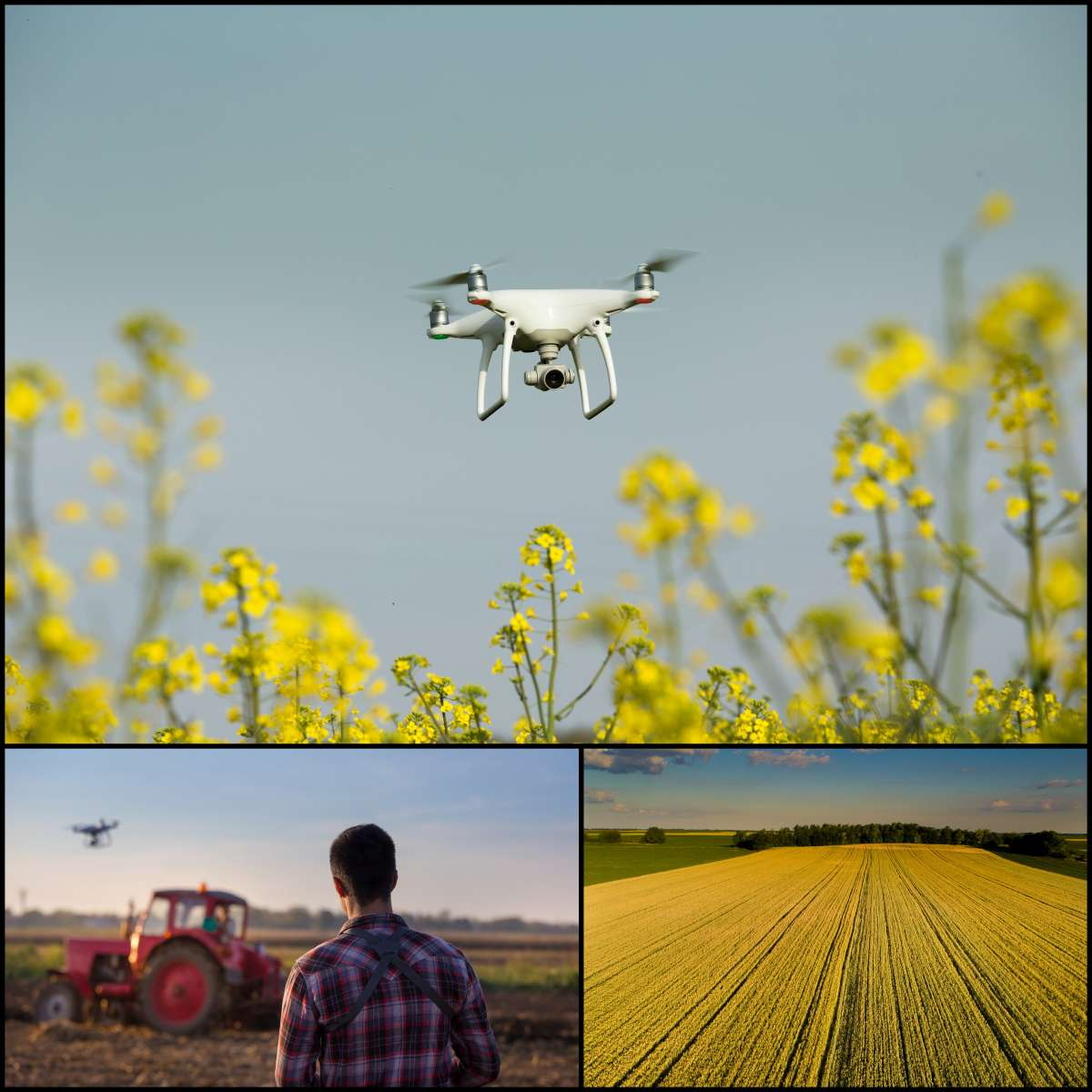 5 Ways Drones Can Make Your Agribusiness More Profitable